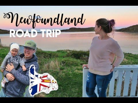 Northern Peninsula Newfoundland Road Trip | Vlog