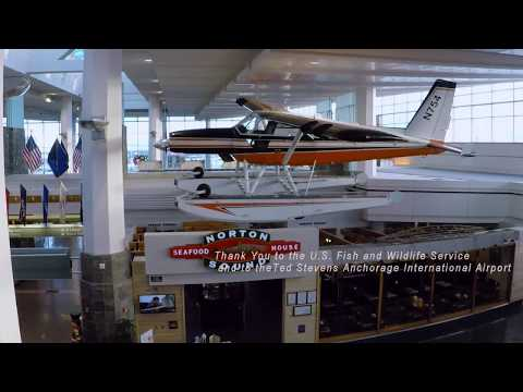 The Assembly and Hanging of N754 in the Ted Stevens Airport