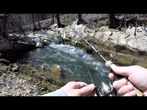 TROUT FISHING Small Streams