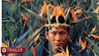 Boiling Point - Takeshi Kitano