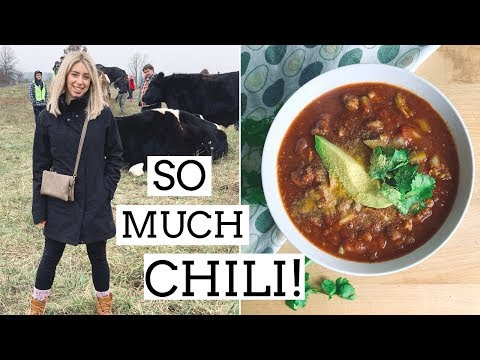 SLOW COOKER VEGAN CHILI RECIPE | Day In The Life & Animal Sanctuary Visit