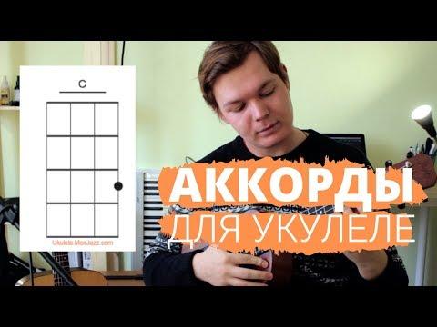 Самые популярные аккорды для укулеле