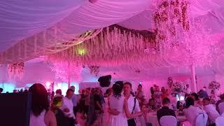 Шоу свет Чебоксары Свадьба Шатер световое оформление