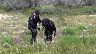 Video Omicidio Lettieri, le ricerche dei carabinieri per trovare le armi del delitto download MP3, 3GP, MP4, WEBM, AVI, FLV Agustus 2017
