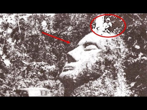 5 Most Amazing And Unexptected Jungle Discoveries That Can't Be Explained