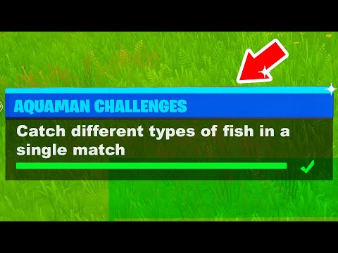 Aquaman Week 3 Challenges Fortnite - Catch Different Types Of Fish In A Single Match