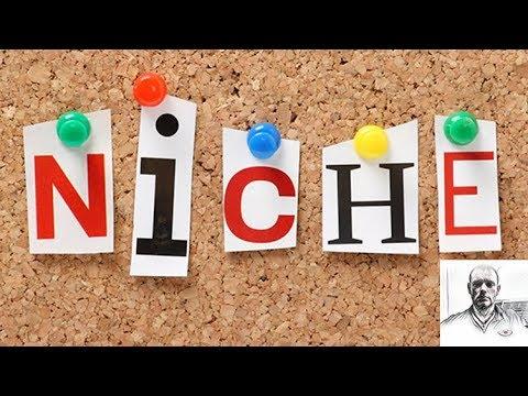 Niche Marketing: Beginner's Niche Market Blueprint