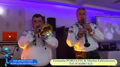 Download Portativ Falticeni Mp3 Free And Mp4