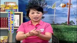 中國國民黨副秘書長 楊瓊瓔女士(1)【台灣平安04】| WXTV唯心電視台