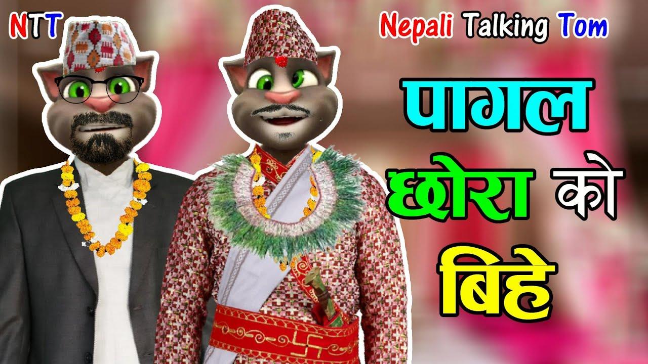 Download Nepali Talking Tom - PAGAL CHORA KO BIHE (पागल छोराको बीहे) Comedy Video - Talking Tom Nepali Comedy