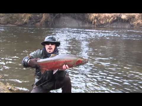 Trout Salmon Steelhead Fishing Madness from Kype Magazine--Fly Fishing and Spin