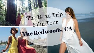 The Redwoods, CA - Road Trip Film Tour VLOG