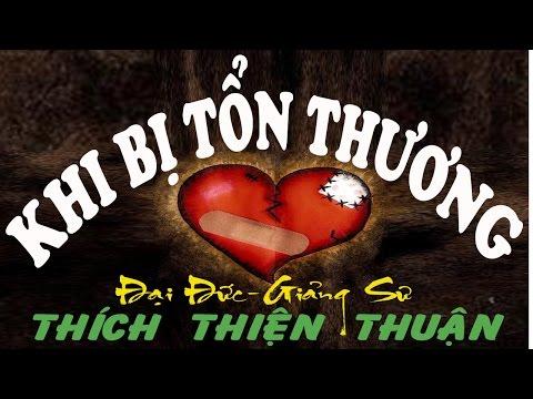 Thich Thien Thuan 2015 - Thuyet Phap KHI BỊ TỔN THƯƠNG (Giảng Tại Chùa Bửu Quang)