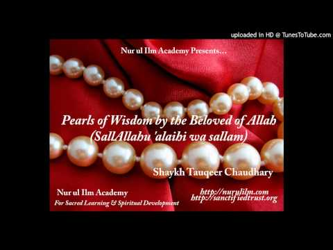 Pearls of Wisdom by the Beloved of Allah :: Shaykh Tauqeer Chaudhary, Nur ul Ilm Academy
