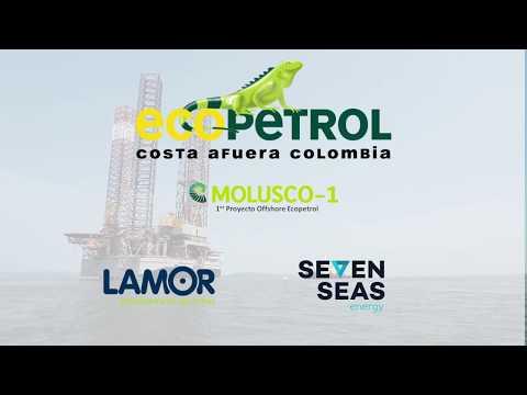 Video Instrucción plataformas Offshore