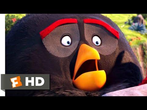The Angry Birds Movie - Pee Lake Scene | Fandango Family