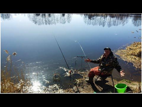 Ловля на донку и фидер в Апреле 2020.Ловля леща, на донку весной.Рыбалка апрель 2020.Ловля плотвы.
