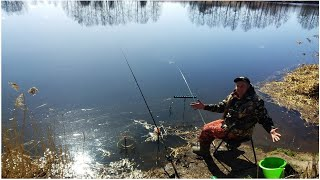 Ловля на донку и фидер в Апреле 2020 Ловля леща на донку весной Рыбалка апрель 2020 Ловля плотвы
