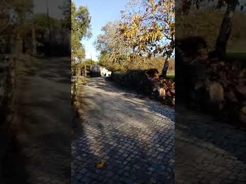 7 tappa del cammino portoghese per Santiago. Da Alvaiázere a Alvorge