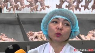ИИД МБ: Жылына 20 мың тонна ет өндіретін құс фабрикасы