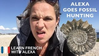 Alexa goes fossil hunting - French comprehension exercise...