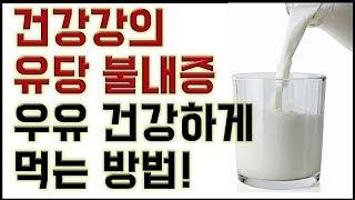 건강강의-유당불내증- 우유 건강하게 먹는 방법