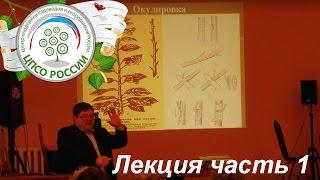 Обрезка и прививка плодовых деревьев. Часть 1. Прививка