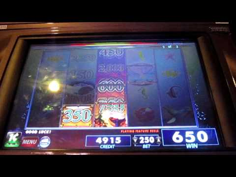 Whale Song Slot Machine Bonus Round