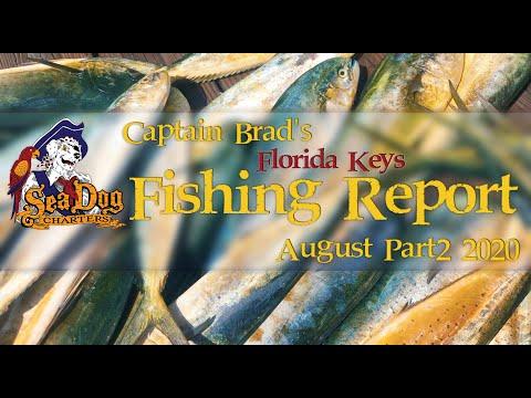 Captain Brad's Fishing Report August 2 2020