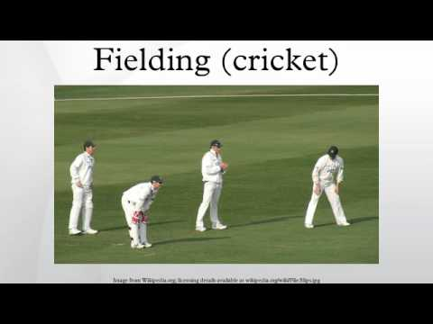 Fielding (cricket)
