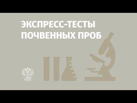 Разработка ферментативных тестов. СФУ