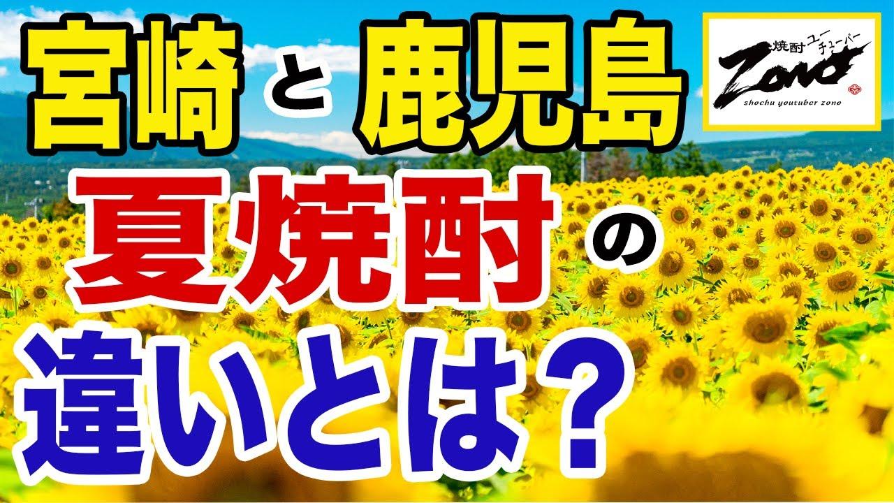 あなたは…「宮崎」と「鹿児島」の『夏焼酎』の違いを知っていますか?