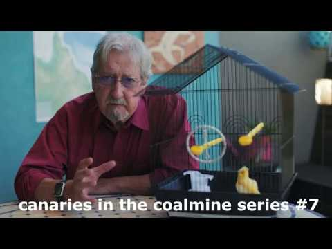 canaries in the coalmine #7 -  nell introduces dr dean miller and mp rob pyne