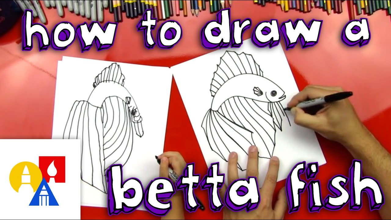 Let\'s Learn About Betta Fish - Lessons - Tes Teach