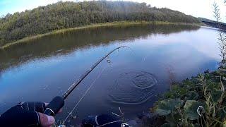 Взял Спиннинг и поеха на СВИЯГУ Рыбалка на спиннинг с берега