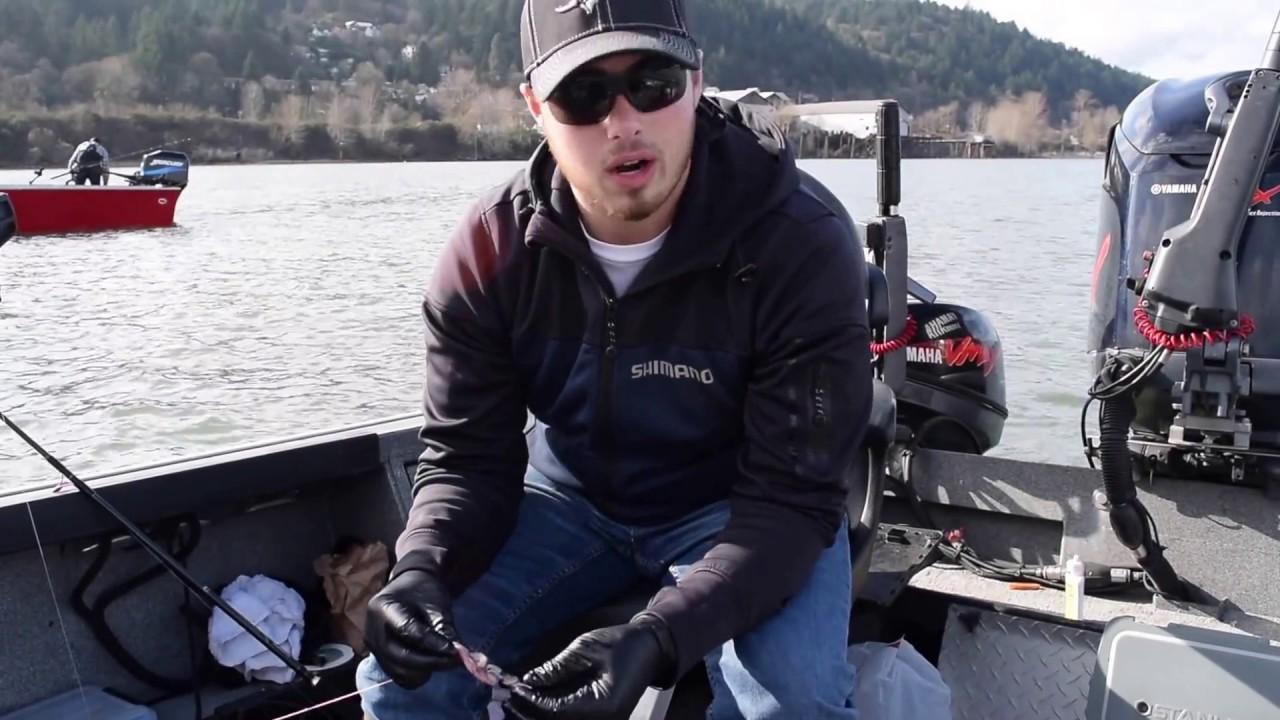 Willamette river sturgeon fishing youtube for Willamette river fishing report