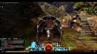 mastery point by watcher s hollow in lake doric guild wars 2