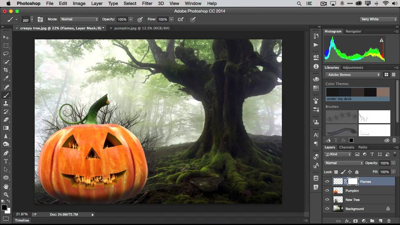 Adobe Illustrator CS5/CS tutorials