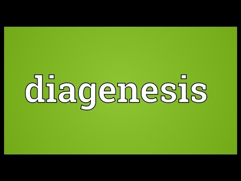 Diagenesis Meaning