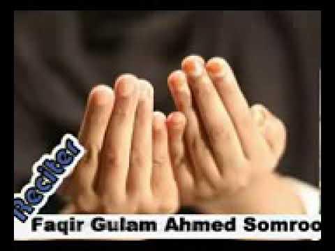 Live in soudhi arab
