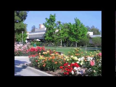 AiM Case Study: California State University, Fresno