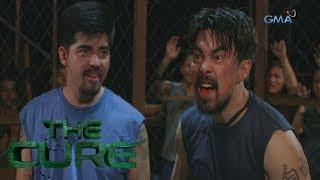 The Cure: Fernan vs Darius