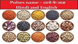 Download lagu PULSES NAMES द ल क न म LEARN PULSES NAMES ENGLISH TO HINDI WITH SID WEB TECH MP3