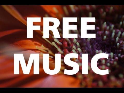Dub Spirit - Jingle Punks [REGGAE / HAPPY] free & no copyright