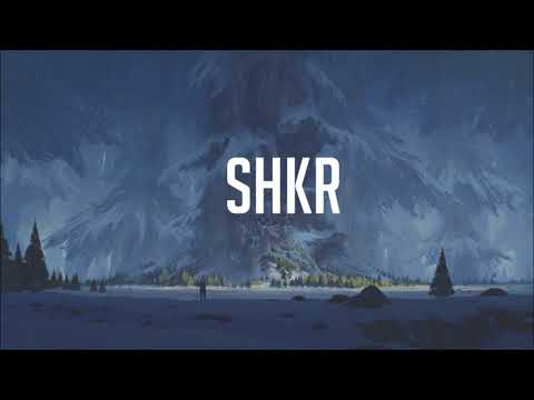 Cash Cash & Dashboard Confessional - Belong [SHKR Remix]