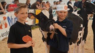 Vent de jeunesse sur le concours Holstein