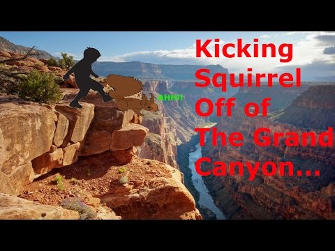 Kicking a Squirrel off of the Grand Canyon (Life Story)