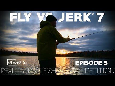 Fly vs Jerk 7 - EPISODE 5 - Kanalgratis.se