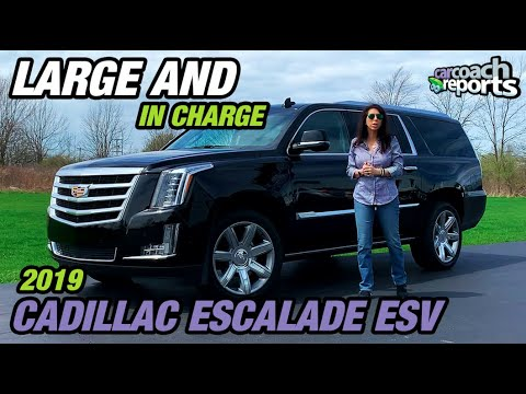 2019 Cadillac Escalade Large And In Charge