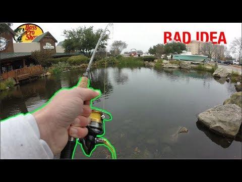 Fishing At Bass Pro Shops!